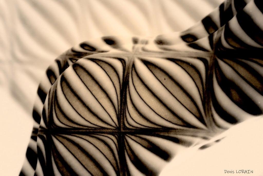 Denis Lorain - Photographe Nu Artistique - Aloyse Projection 16.03.2021 34