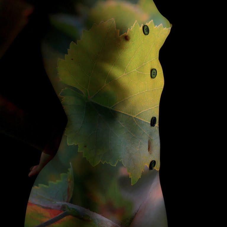 Denis Lorain - Photographe Nu Artistique - Nude 11.07.2014 039