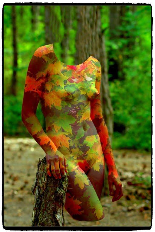 Denis Lorain - Photographe Nu Artistique - Nude 144